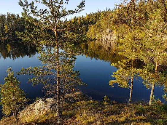 Kalliolta aukeava järvimaisema mäntymetsän keskellä.